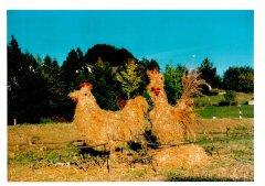 Strohpark_1997_012.jpg