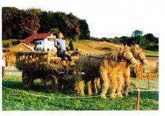 Strohpark_1999_016.jpg