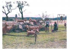 Strohpark_2001_003.jpg