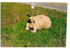 Strohpark_2002_004.jpg