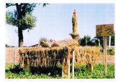 Strohpark_2002_016.jpg